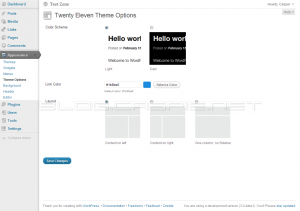 Twenty Eleven - Theme Options