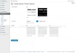 Twenty Eleven - Theme Options