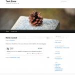 WordPress 3.4 - Twitter oEmbed